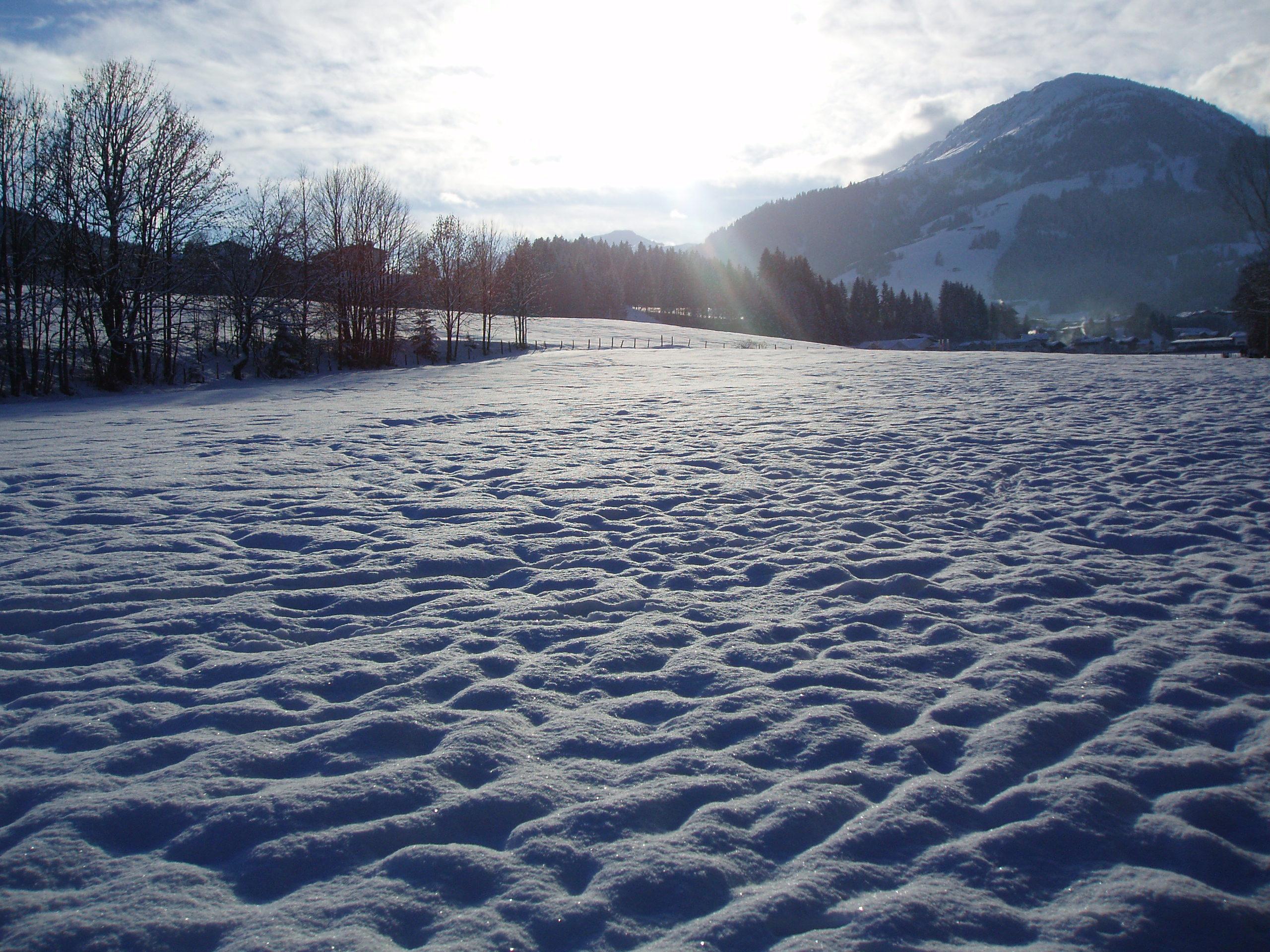 Produkte Winter