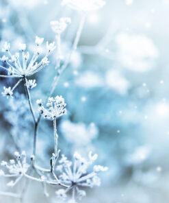 NEUE PRODUKTE Winter 2018-19